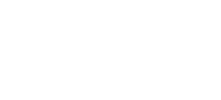 Public Safety and Defence Consultants